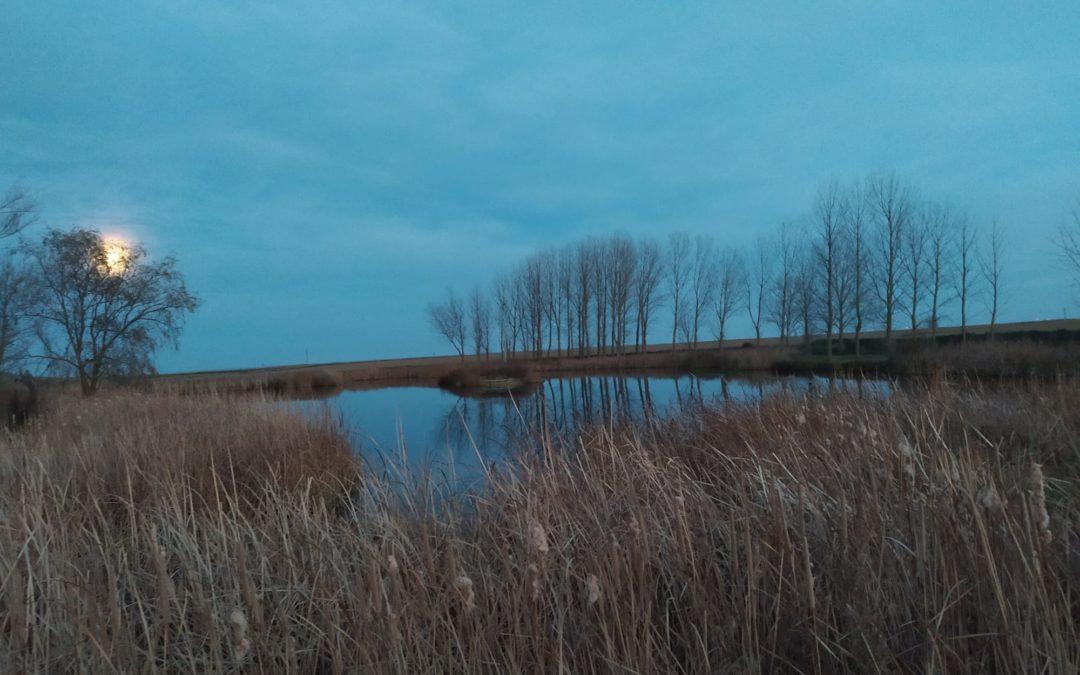 Anochece en la laguna de Marcilla de Campos